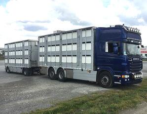скотовоз SCANIA R620 V8 For animal transport - do zywca + прицеп скотовоз